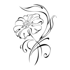 ornament 45. stylized flower in black lines on a white background