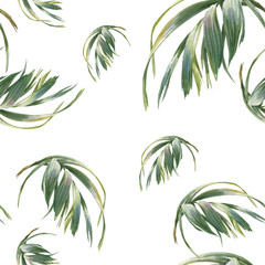 Watercolor illustration of leaf, seamless pattern on white background
