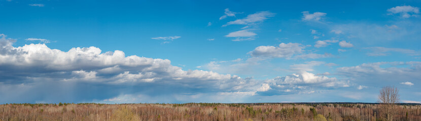 Panorama image of  blue sky with white clouds over the forest. Vologda region, Russia