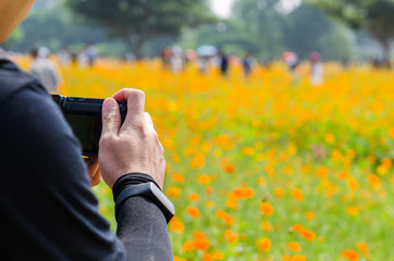 Photographer's hand on camera with flower field background