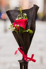 Rosas para San Valentín-Flor de Lola-Conde duque- Madrid