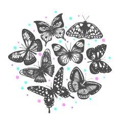 vector composition with hand drawn butterflies