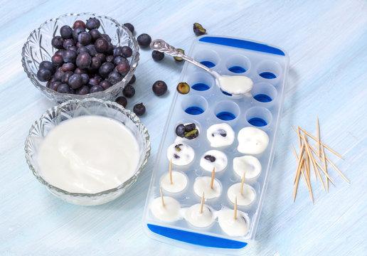 Preparation of ice cream from yogurt and blueberry