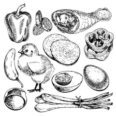 Vector hand drawn set of farm vegetables. Isolated bell pepper, chicken, leg, eggs, onion. Engraved art. Organic sketched objects.