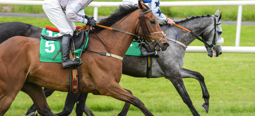 Close up detail of two racehorses and jockeys competing in a race