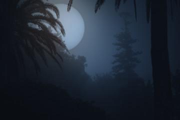 Foggy park at night
