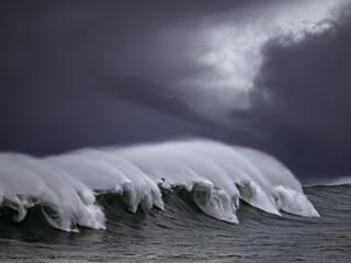 Windy sea wave