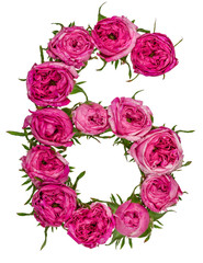 Arabic numeral 6, six, from red flowers of rose, isolated on white background
