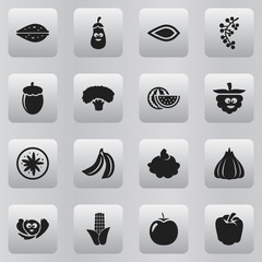 Set Of 16 Editable Food Icons. Includes Symbols Such As Watermelon, Almond, Exotic Dessert And More. Can Be Used For Web, Mobile, UI And Infographic Design.