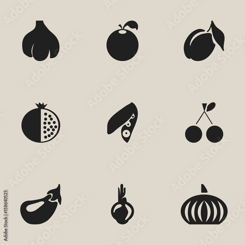 set of 9 editable fruits icons includes symbols such as gourd