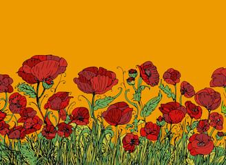 banner con campo di i papaveri rossi con sfondo giallo