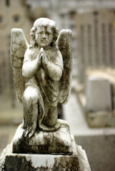 an old ivory statue of an angel kneeling to pray in a cemetry