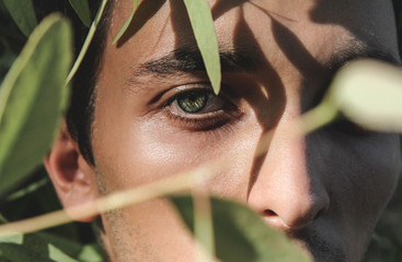 Young Man Seen Through Leaves