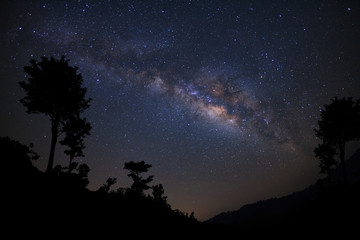 Landscape with milky way, Night sky with stars and silhouette of tree, Long exposure photograph, with grain.