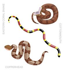 Snake North American Venomous Set Cartoon Vector Illustration