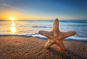 Beautiful beach with sunrise background. Focus on sea starfish.