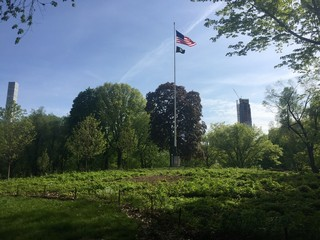 American flag pole at Central Park in late spring