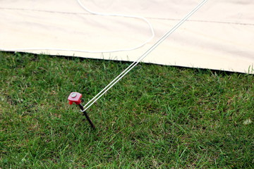 Modern steel and plastic tent peg hammered into the grass attached to a guy rope
