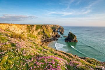 Fototapete - Cornish Cliffs in Summer