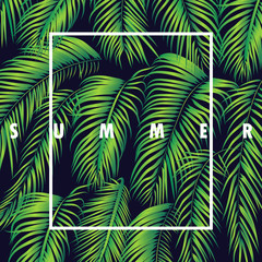 summer_palm_leafs_background_texture