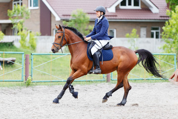 Young rider man on bay horse on equestrian sport competition