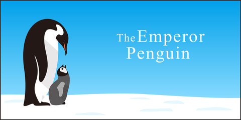 Emperor Penguin Family love each other deeply, Vector