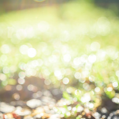 abstract nature background with blurry bokeh defocused lights
