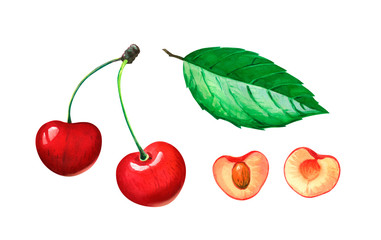 Red sweet cherries whole and half with leaf watercolor illustration