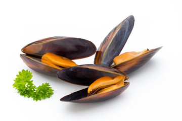 Fond de hotte en verre imprimé Coquillage Mussels isolated on white background. Sea food.