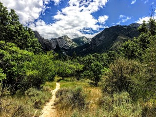 Wasatch Front Cottonwood hiking trail Bell Canyon landscape scenery with alpine meadows photographed during summer