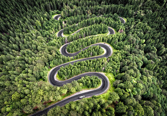 Winding road in the forest