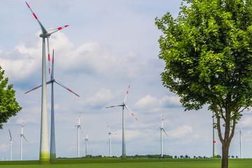 Fotoväggar - Windräder Landschaft Windpark