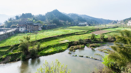 gardens, rice fields, tea plantation in Chengyang