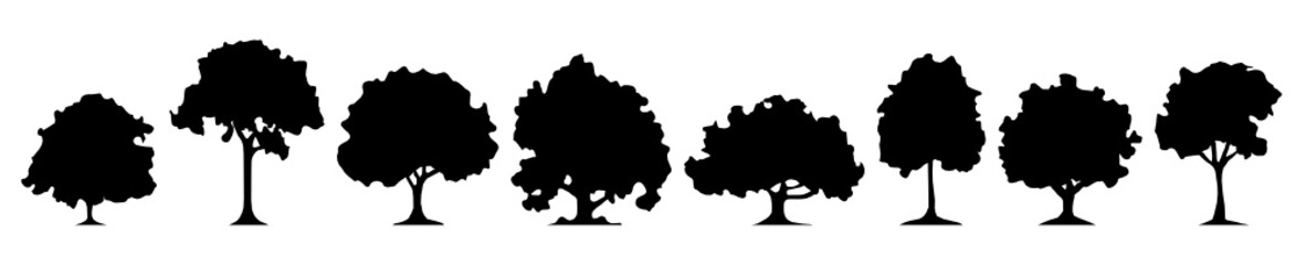 Silhouette Laubwald