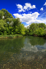 Fototapete - river and green with trees and blue sky with clouds Sunny day, beautiful rural landscape