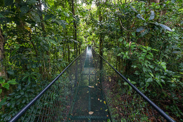 A metal suspension bridge that crosses the tropical forest in Costa Rica