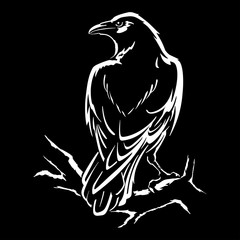 Raven isolated vector illustration