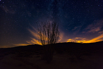 A night shot in the Anza Borrego Desert