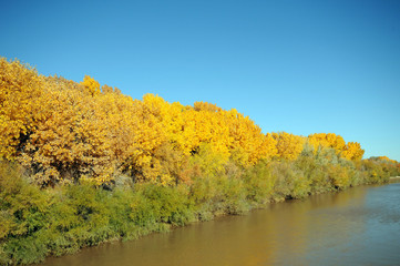 Rio Grande Rift in Fall