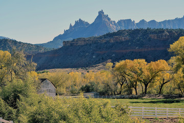 Utah Fall Farm