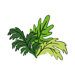 Plant nature ecology icon vector illustration graphic design