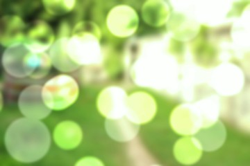 Blur natural, abstract green bokeh and light background the park