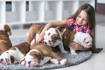 Cute beautiful little girl playing with puppies of English bulldog