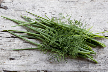bunch of fresh dill and bow-feather on tho old wood
