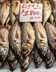 Fish stall at Mercado Central, Santiago, Chile.