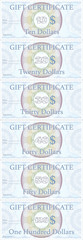 Template professional American Dollar Gift certificate, 10,20,30,40,50,100 dollar, designed as an official check