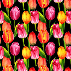 Wildflower tulip flower pattern in a watercolor style isolated.