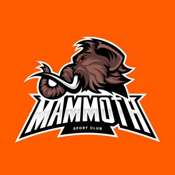 Furious woolly mammoth head sport vector logo concept isolated on orange background. Modern professional mascot team badge design. Premium quality wild animal t-shirt tee print illustration.