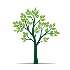 Natural Green Tree with Leaves. Vector Illustration.