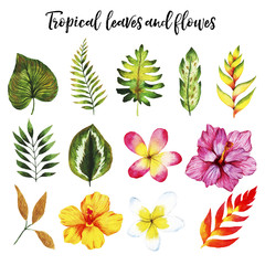 Watercolor set with tropical leaves and flowers